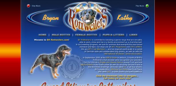 BK Rottweilers – Flash